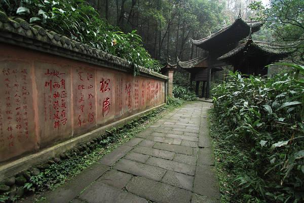 Chinese Language Photograph - Majestic Emeishan by By Chakarin Wattanamongkol