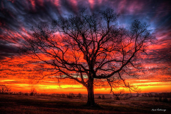 Photograph - Majestic Oak Tree Silhouette Northeast Georgia Sunrise Farming Landscape Art by Reid Callaway