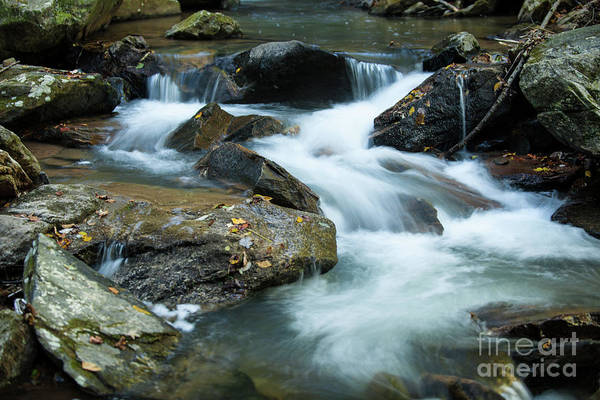 Photograph - Majestic River Sounds by Dale Powell