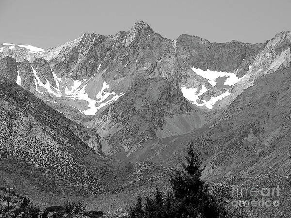 Wall Art - Photograph - Majestic View by Robert Ball