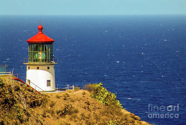 Photograph - Makapu'u Point Lighthouse - East Oahu, Hawaii  by D Davila