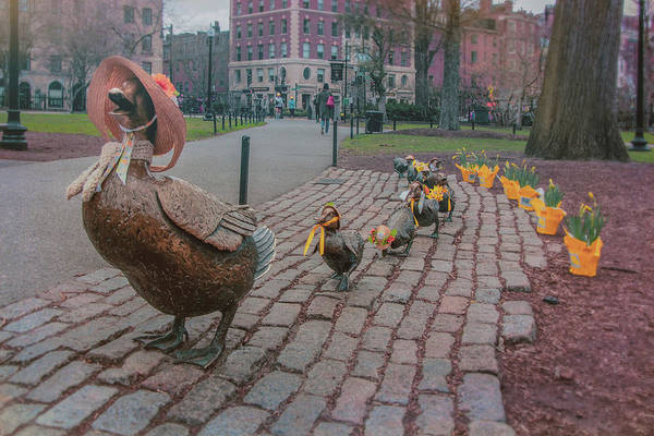Photograph - Make Way For Ducklings - Boston Spring  by Joann Vitali