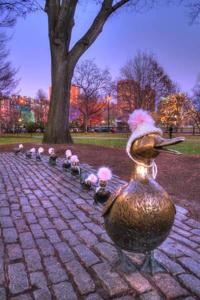 Photograph - Make Way For Ducklings - Boston Winter by Joann Vitali