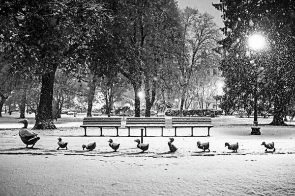 Photograph - Make Way For Ducklings In The Snow Boston Common Boston Ma Black And White by Toby McGuire