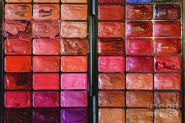 Photograph - Makeup Palette With Multiple Colors. by Joaquin Corbalan