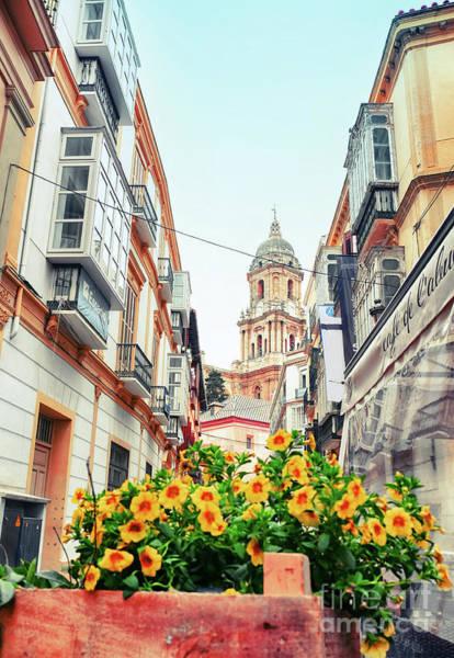 Photograph - Malaga Street, Spain by Ariadna De Raadt