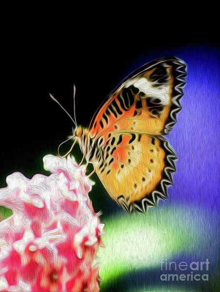 Digital Art - Malay Lacewing Butterfly I by Kenneth Montgomery