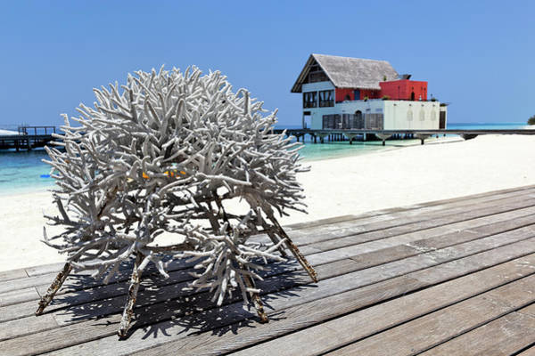 Luxury Hotel Photograph - Maldives, Atoll Baa, Hotel, Dead Coral by Hauser Patrice / Hemis.fr