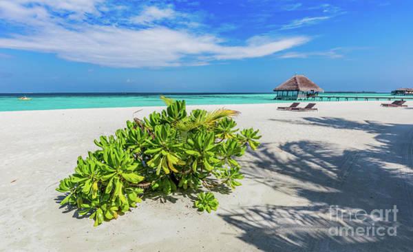 Wall Art - Photograph - Maldivian Beach And Blue Ocean. by Michal Bednarek