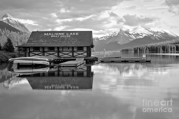 Photograph - Maligne Lake Golden Pines Black And White by Adam Jewell