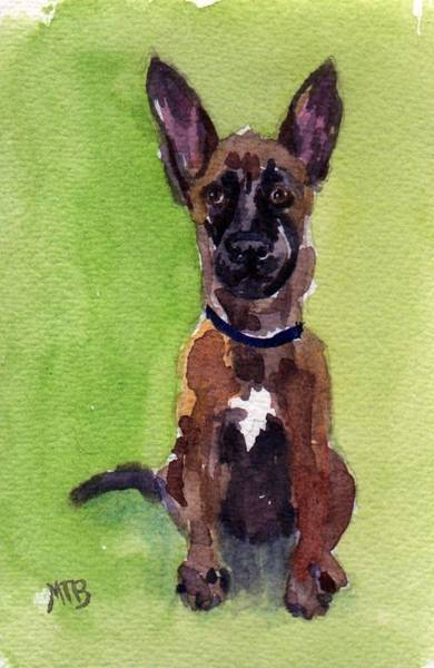 Painting - Malinois Pup 2 by Mimi Boothby
