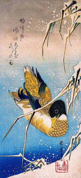 Wall Art - Painting - Mallard Duck And Snow-covered Reeds by Utagawa Hiroshige