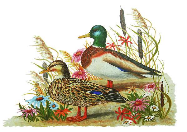 Bullrush Painting - Mallard Ducks by Monica LaTanya