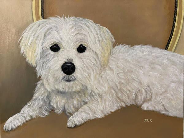 Painting - Maltese Dog by Karen Zuk Rosenblatt