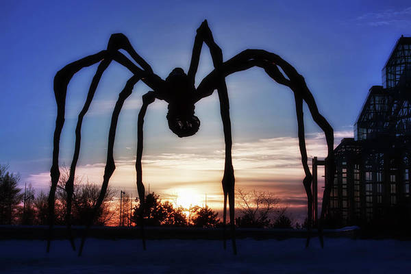 Photograph - Maman, The Giant Spider by Tatiana Travelways