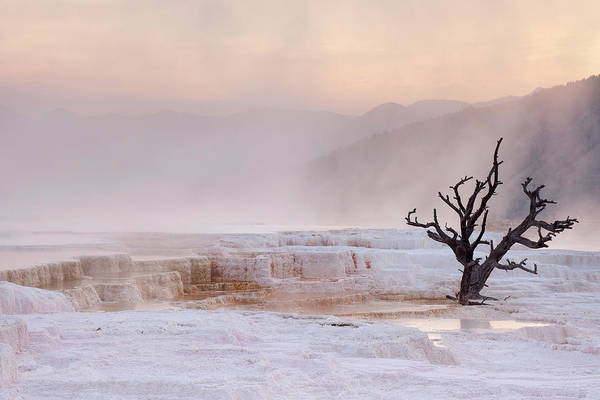 Wall Art - Photograph - Mammoth Hot Springs In Yellowstone by Sara winter