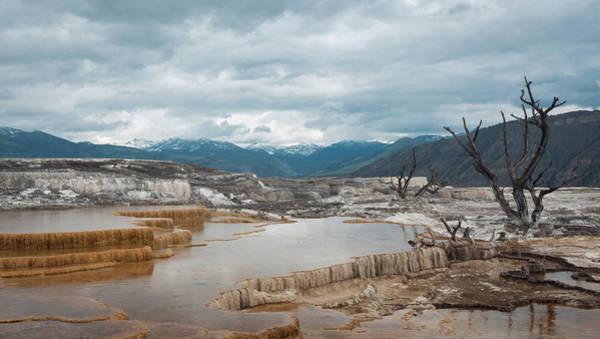 Wall Art - Photograph - Mammoth Steps Of Yellowstone by Carmine Iallonardo