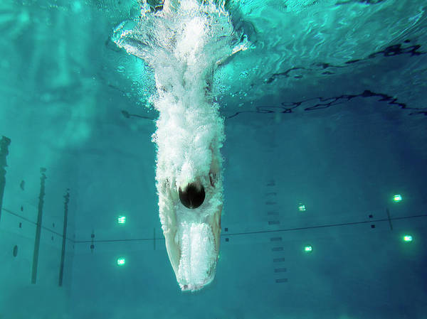 Underwater Diving Photograph - Man Diving Into Swimming Pool, Low by Chase Jarvis