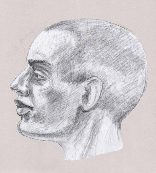 Drawing - Man Head Study Profile  by Irina Sztukowski