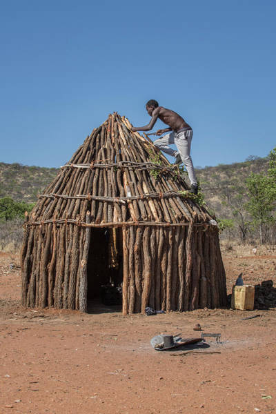 Wall Art - Photograph - Man Of The People Of Ovahimba Or Himba Builds On The Roof Of A Wooden Hut Kunene District Namibia by imageBROKER - Matthias Graben