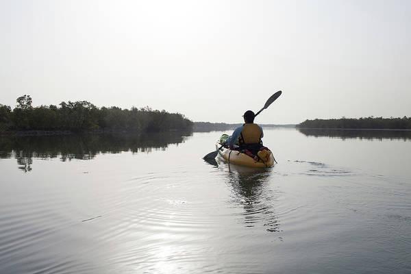 Oar Photograph - Man Paddling Kayak Through Mangrove by Henry Lederer