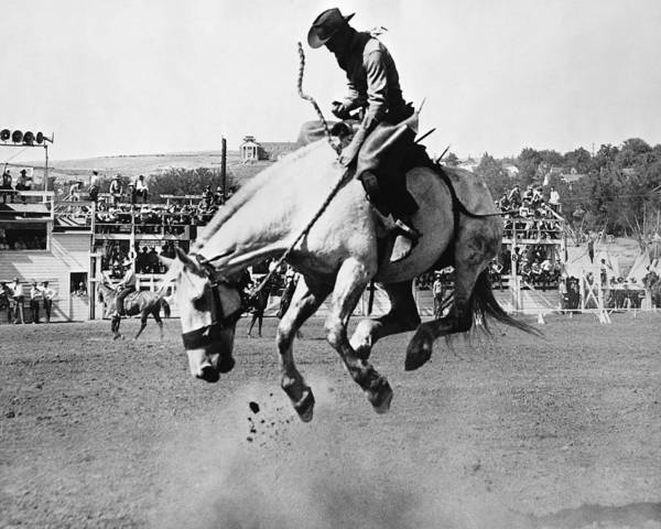 Black Buck Photograph - Man Riding Bucking Horse In Rodeo by Stockbyte