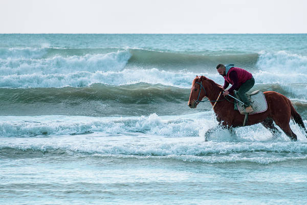 Photograph - Man Riding On A Brown Galloping Horse In The Sea Waters Of Ayia  by Iordanis Pallikaras