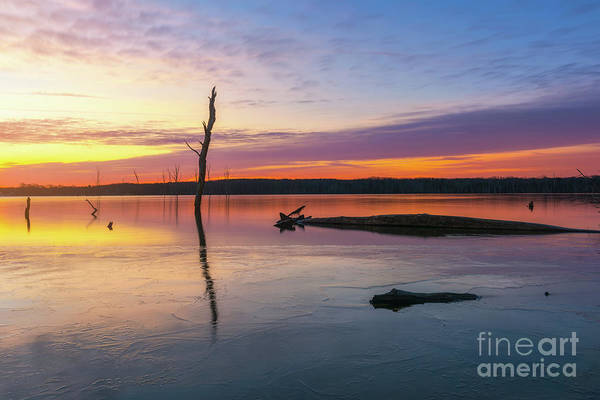 Photograph - Manasquan Reservoir Icy Sunrise  by Michael Ver Sprill