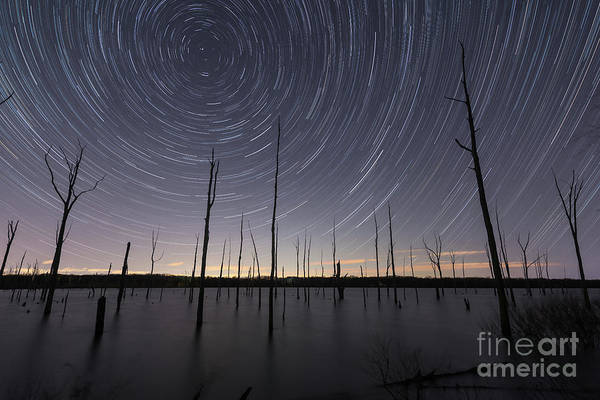 Photograph - Manasquan Reservoir Star Trails  by Michael Ver Sprill