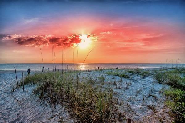 Wall Art - Photograph - Manatee Beach Sea Grass Sunset by Louis Ferreira