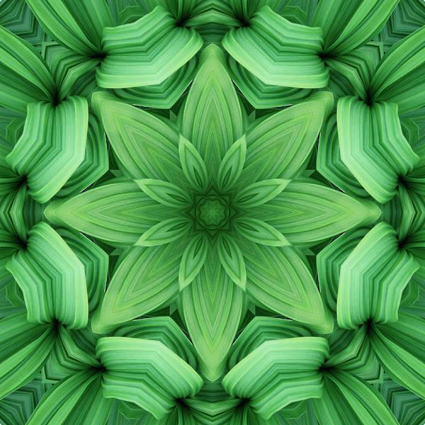 Symmetry Photograph - Mandala 2 by Steve Satushek