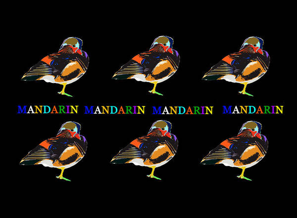 Cell Phone Cases Mixed Media - Mandarin Duck by David Lee Thompson