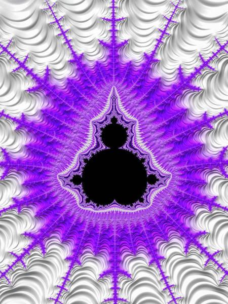 Wall Art - Digital Art - Mandelbrot Set Purple Black White Fractal by Matthias Hauser