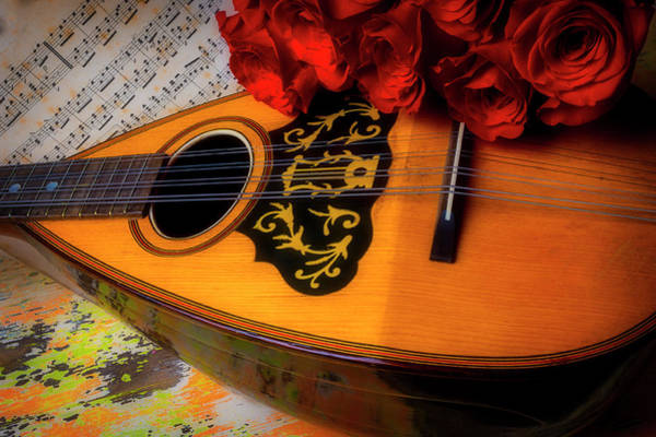 Wall Art - Photograph - Mandolin And Red Roses by Garry Gay