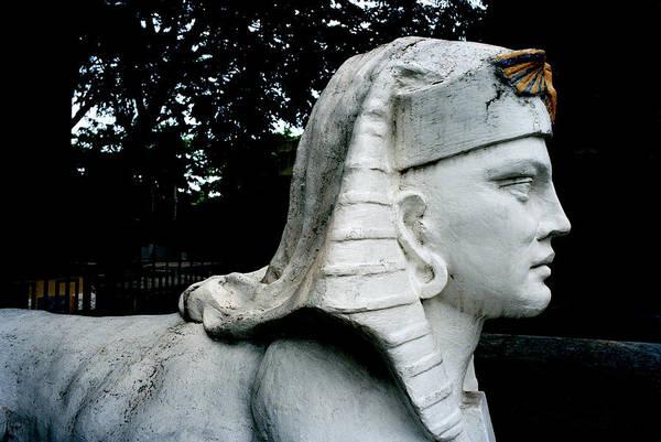 Photograph - Manila Sphinx by Shaun Higson