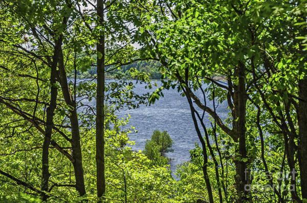 Photograph - Manistee Lake Through The Trees by Sue Smith