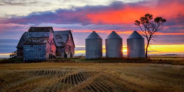 Photograph - Manitoba Rural Scene by Harriet Feagin