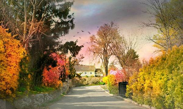 Wall Art - Photograph - Manor Drive Larchmont by Diana Angstadt