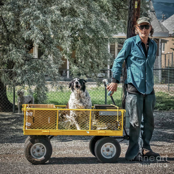 Photograph - Man's Best Friend by Janice Pariza