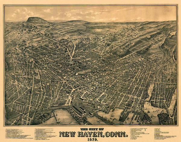 Photograph - Map Of New Haven 1879 by Andrew Fare