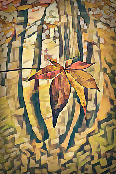 Photograph - Maple Leaf In Autumn In Abstract Golds by Debra and Dave Vanderlaan