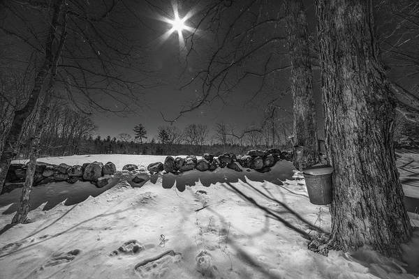 Photograph - Maple Sugaring Sap Buckets by Joann Vitali