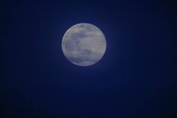Photograph - March 2019 Supermoon by Karen Silvestri