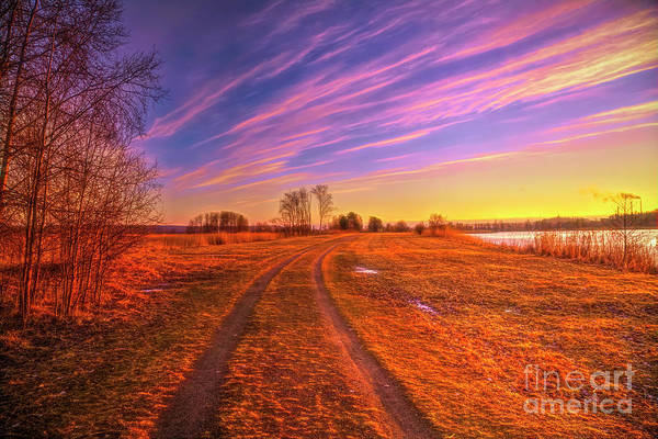 Wall Art - Photograph - March Morning 2 by Veikko Suikkanen