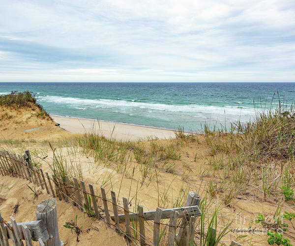 Photograph - Marconi Beach In Spring by Michelle Constantine