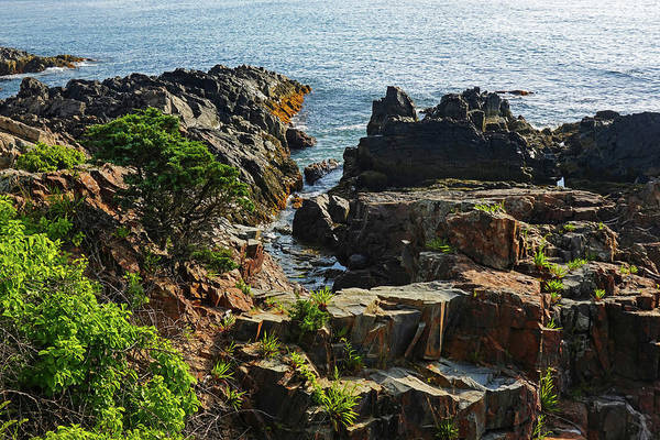 Wall Art - Photograph - Marginal Way Rocky Coastline Ogunquit Maine by Toby McGuire