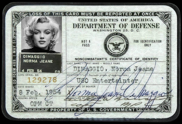 Leading Actress Wall Art - Photograph - Marilyn Monroe Dept Of Defense Identification Card 1954 by Daniel Hagerman