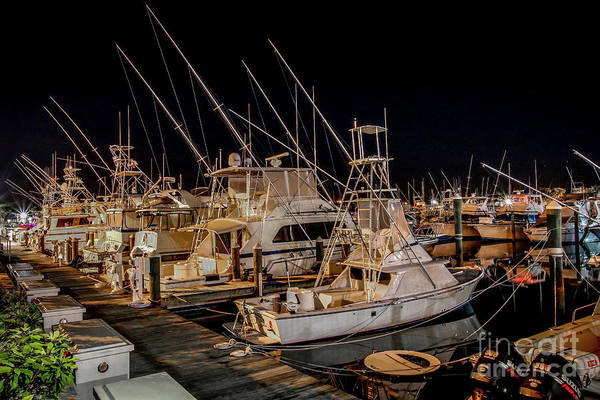 Photograph - Marina Fishing Boats by Tom Claud