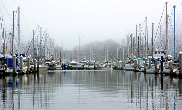 Photograph - Marina Fog Makes Its Exit by Susan Wiedmann