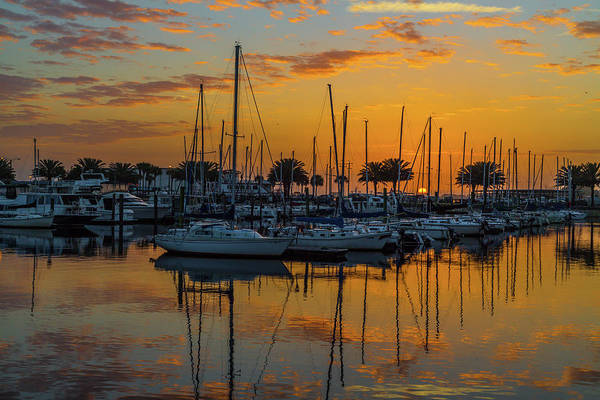 Photograph - Marina Sunrise-3 by John Zawacki